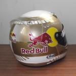 Helmets Replicas-Sean McMahon 02