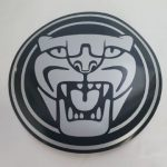 Vehicles Cars-Ernie Buckley Jaguar Magnetic 2021