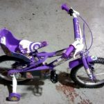 Vehicles General-Lucy Rapunzel Bicycle 2017 01