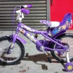 Vehicles General-Lucy Rapunzel Bicycle 2017 02